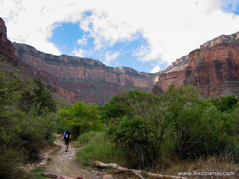 bright angel trail indian garden