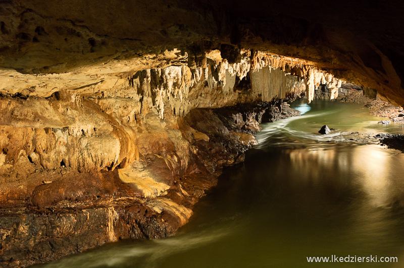 jaskinia postojna rzeka