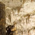 Jaskinia Postojna – największa jaskinia Słowenii