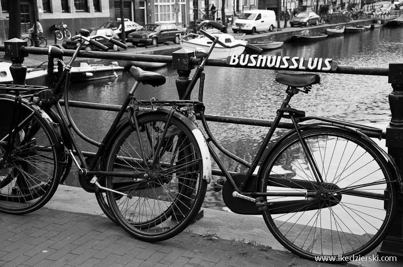 holandia rowery