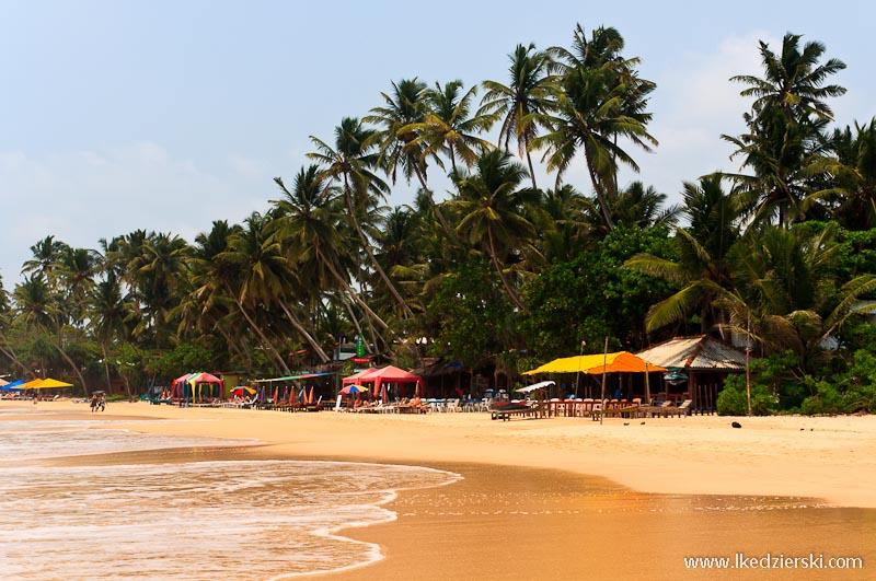 sri lanka podróż mirissa plaża