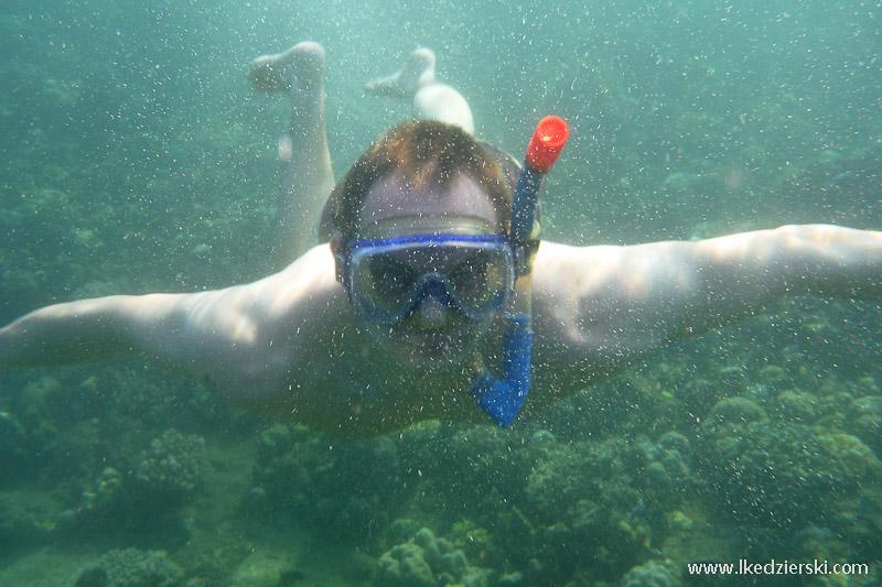 snorkeling w lovina łukasz kędzierski