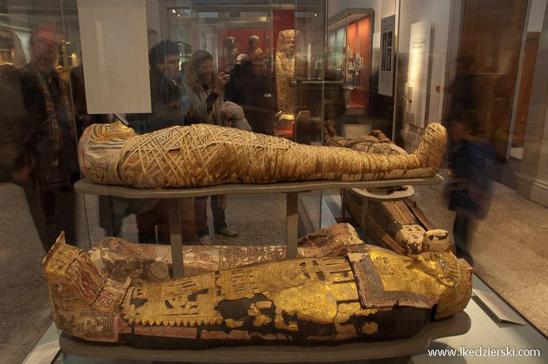 muzea londynu british museum mumia