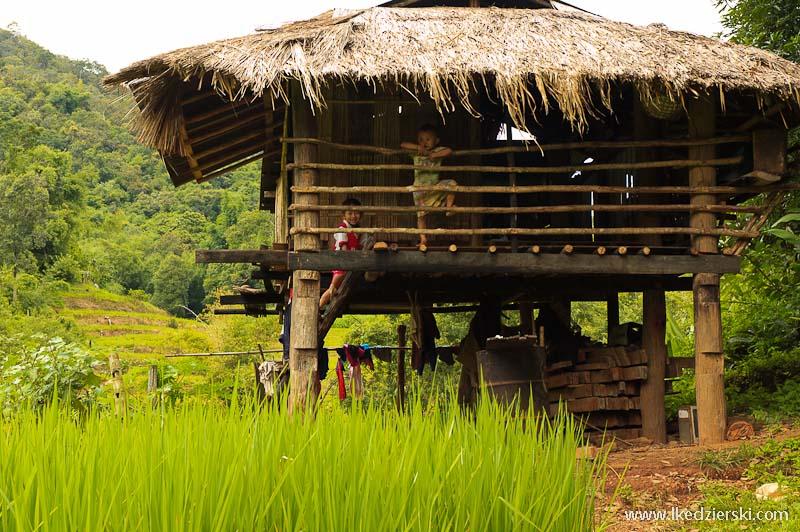 tajlandia chatka z banbusa