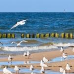 Czy warto pojechać nad polskie morze?