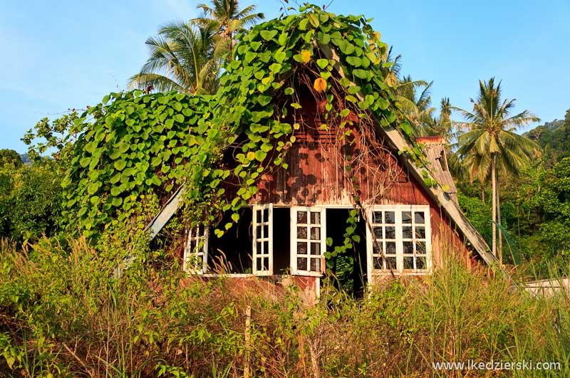 wyspa tioman bungalow