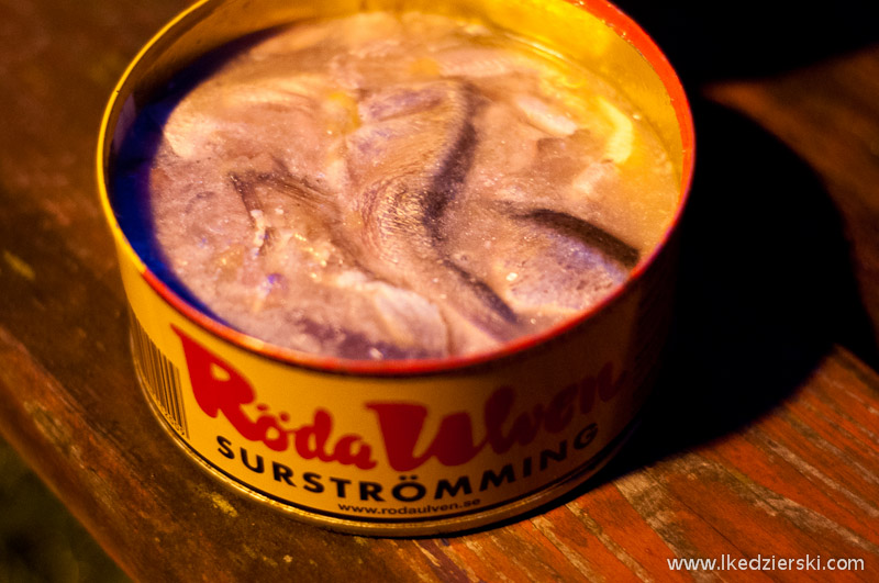 surströmming szwedzki śledź