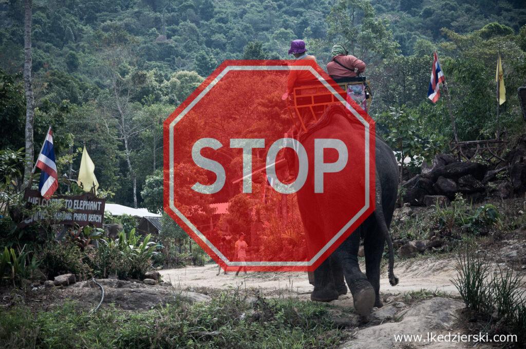 tajlandia jazda na słoniu STOP