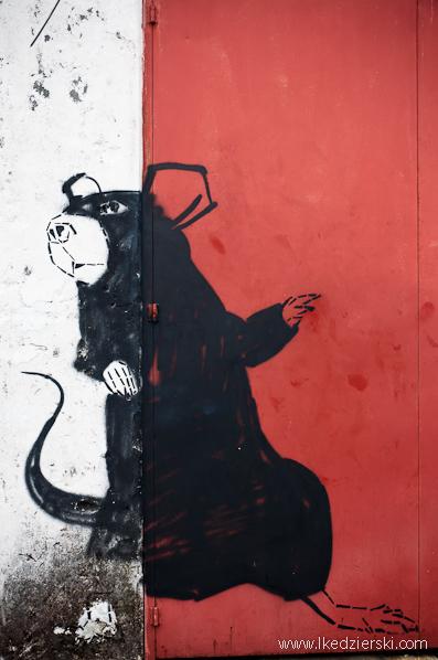 giant rat mural murale w georgetown