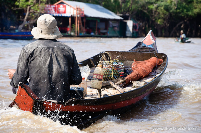 mangrove forest łódź