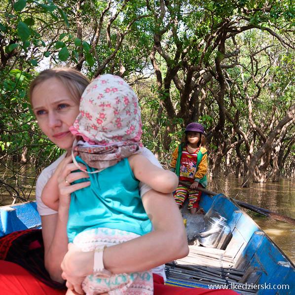mangrove forest nadia