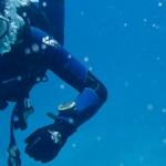 Nurkowanie w Dahab, czyli magia podwodnego świata