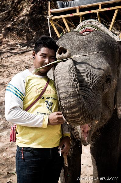 słoń i opiekun