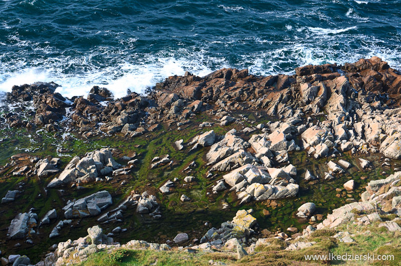 hammeren wybrzeże