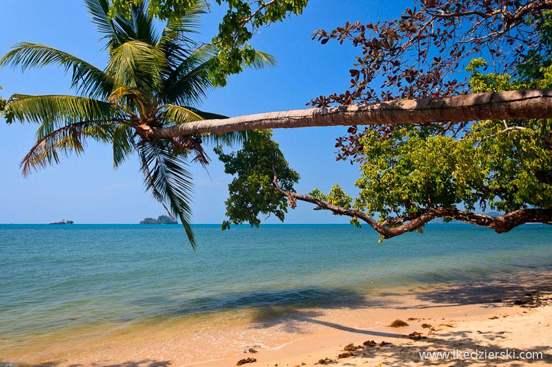 plaża kai bae beach palma