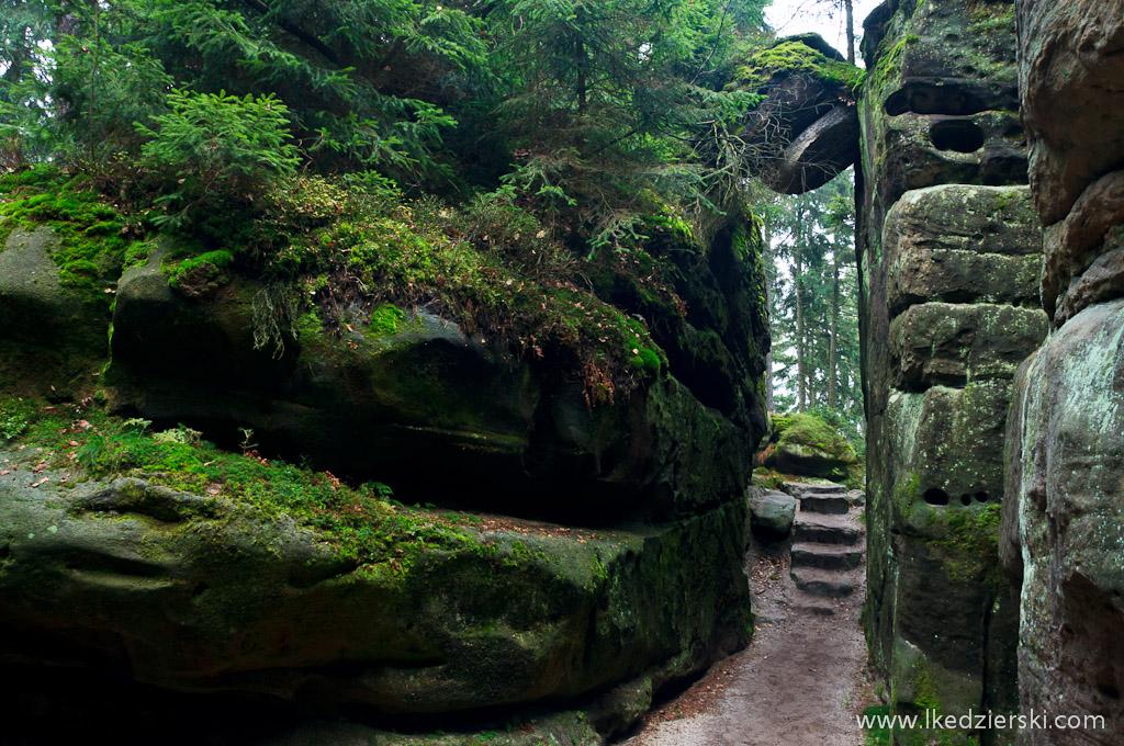 Horni labyrint skalne miasto zdjęcia