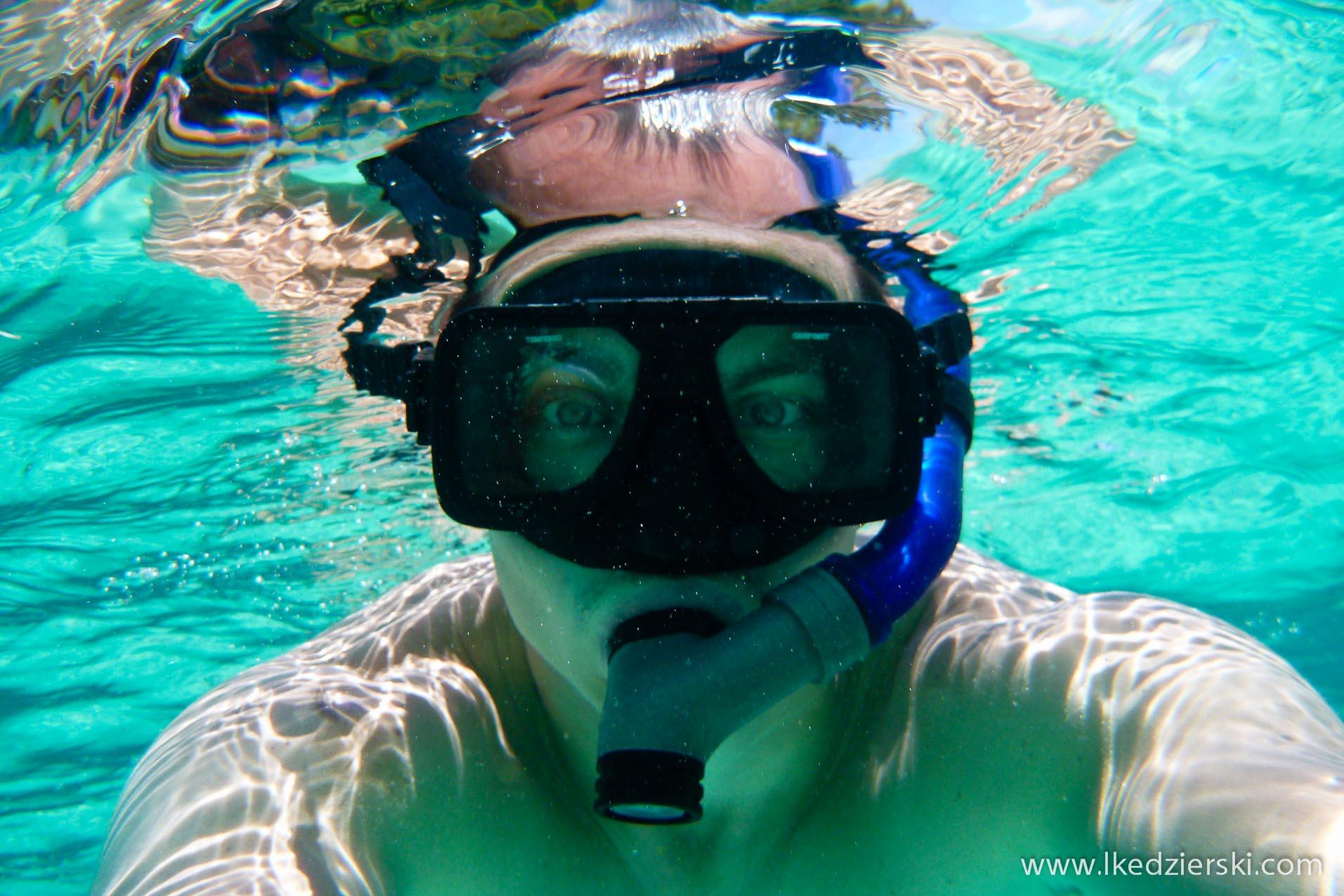 snorkeling snorkel
