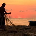 Podróż na Sri Lankę – zapiski z podróży pisane na gorąco…
