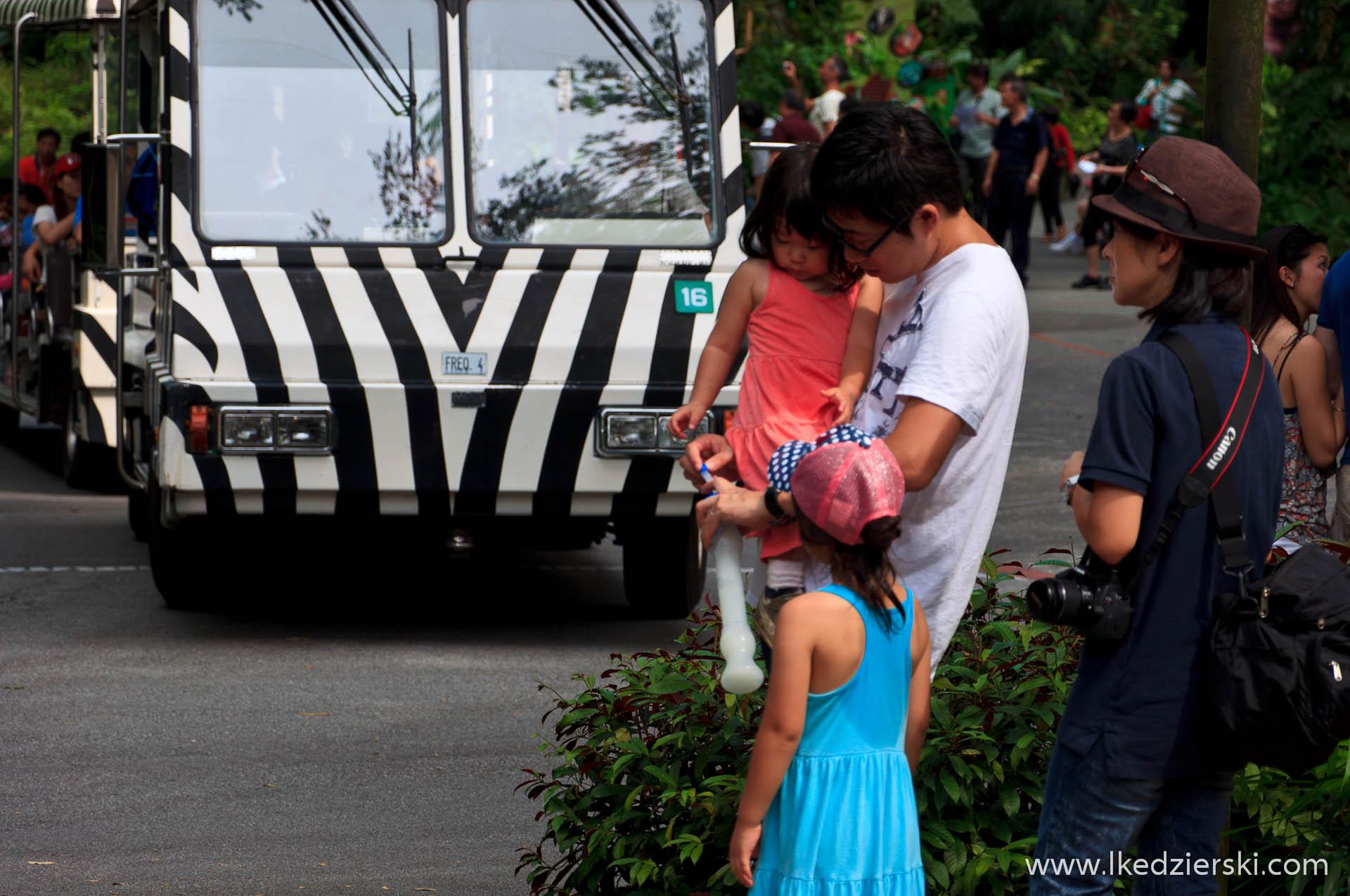 zoo w singapurze turyści