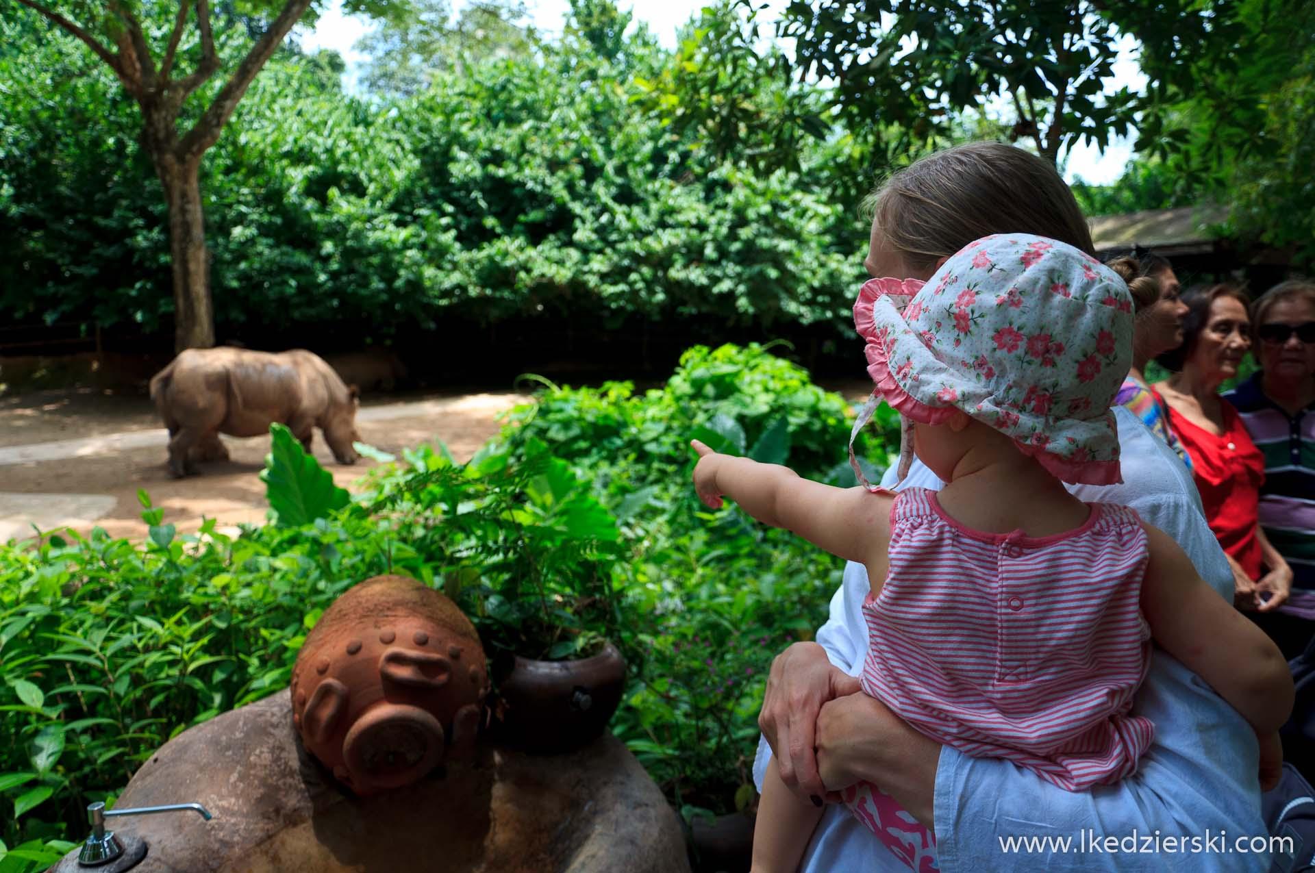 zoo w singapurze nadia w podróży