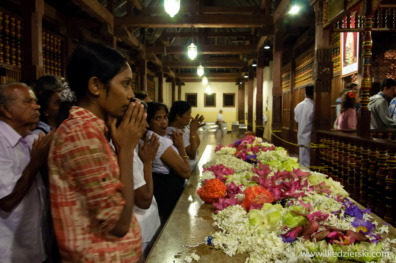 sri lanka sacred tooth relic świątynia zęba