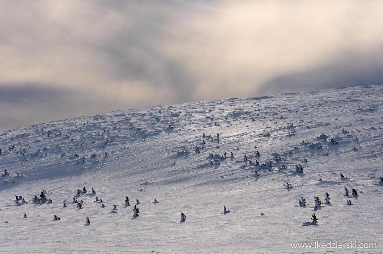 zimowe karkonosze śnieżka