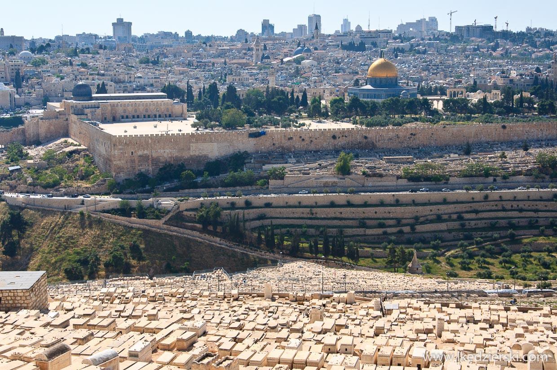 góra oliwna jerozolima panorama