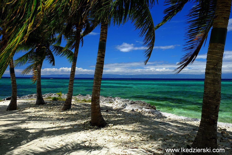 panglao doljo beach
