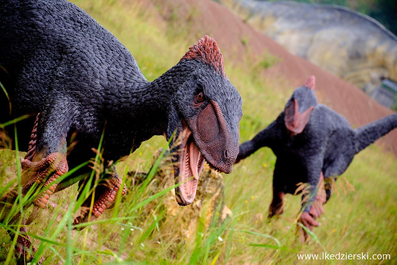 Krasiejów, park dinozaurów, jurapark krasiejów, jurapark, dinozaury dla dzieci,