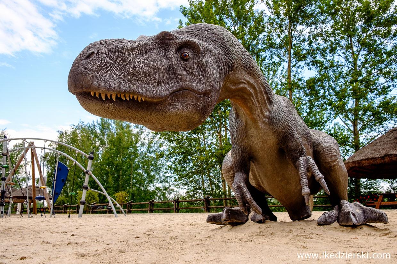 jurapark krasiejów plac zabaw dinozaur