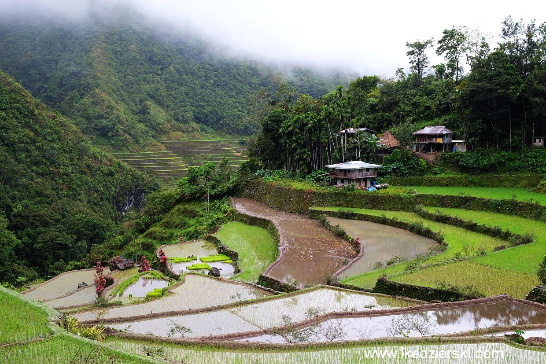 batad pola ryżowe