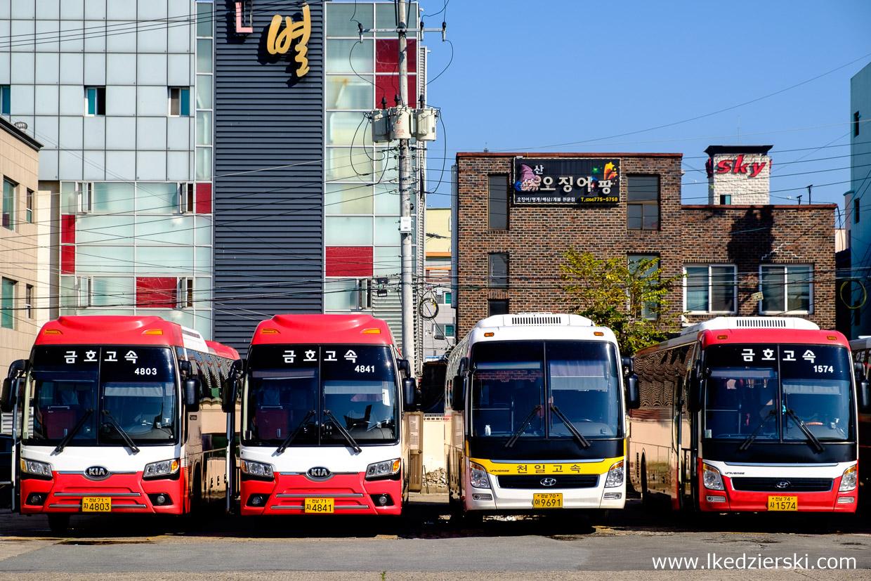 korea południowa transport autobusy gyeongju