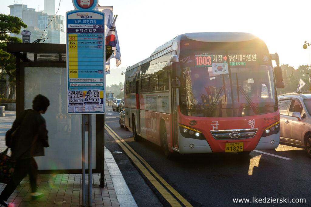 korea południowa transport autobus