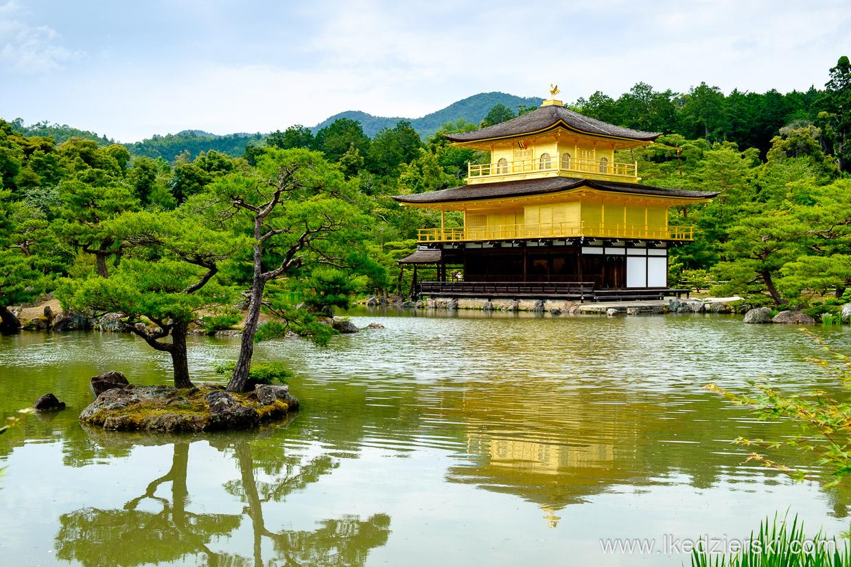japonia kioto gold pavilion
