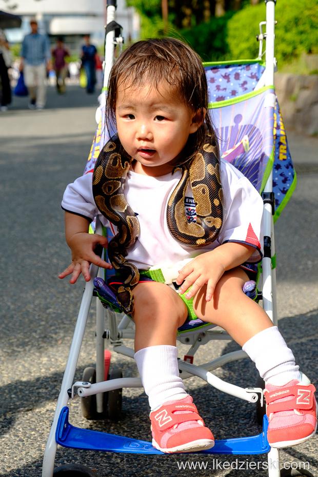 japonia osaka wąż dziecko podróż z dzieckiem do japonii