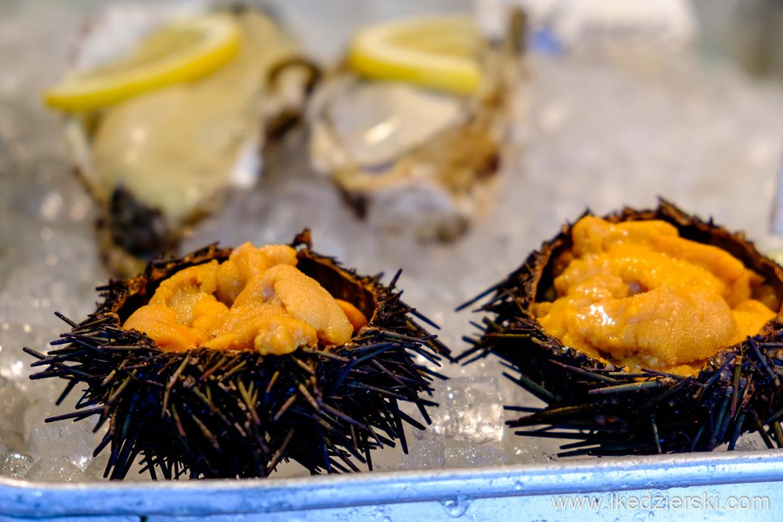 japonia tokio jeżowiec tsukiji market sea urchin