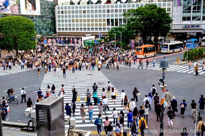 japonia tokio tokyo shibuya crossing skrzyżowanie