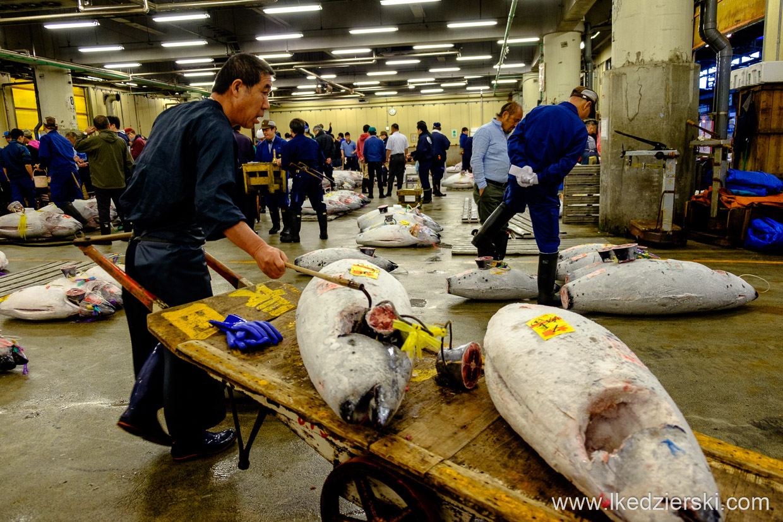 japonia tokio tsukiji market tuna auction giełda tuńczyka