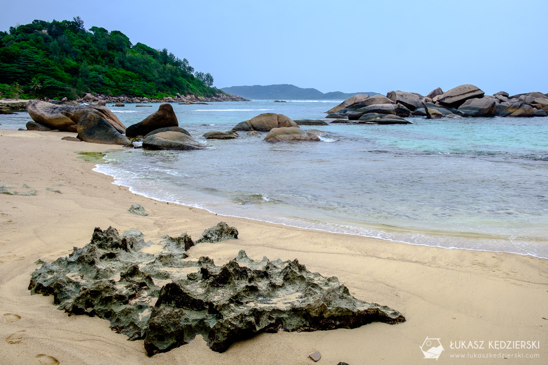 seszele praslin anse consolation seychelles beach