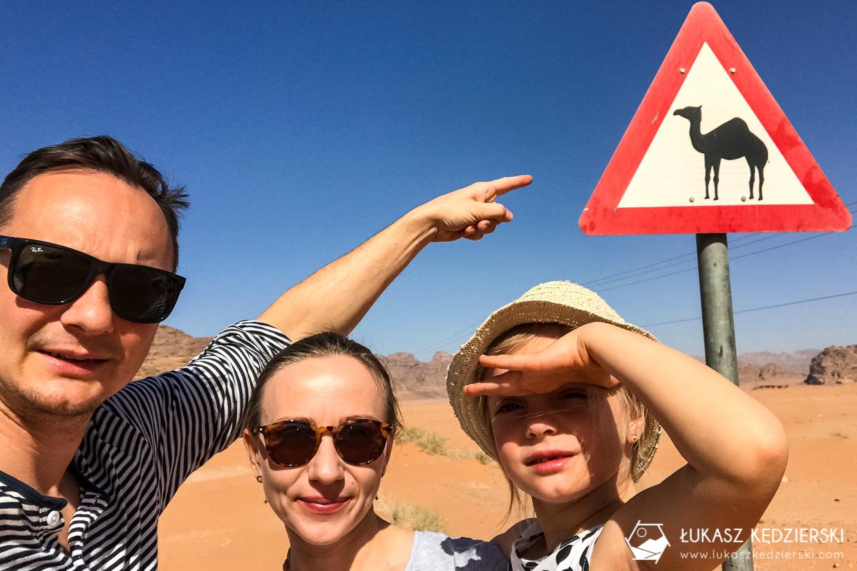 jordania wielbłąd znak jazda samochodem w jordanii