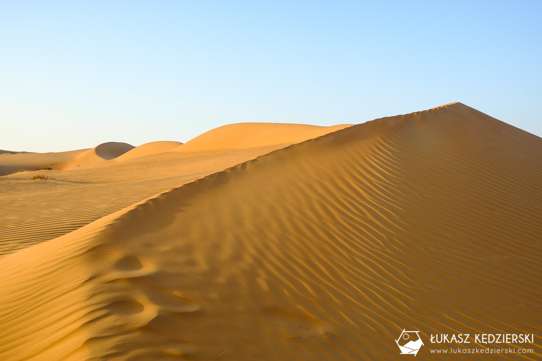 oman wahiba sands pustynia