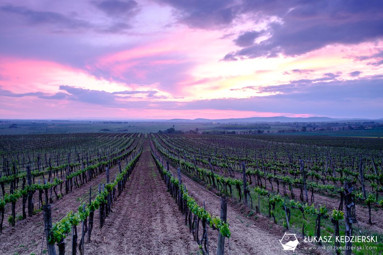 atrakcje węgier tarcal winnice tokaj