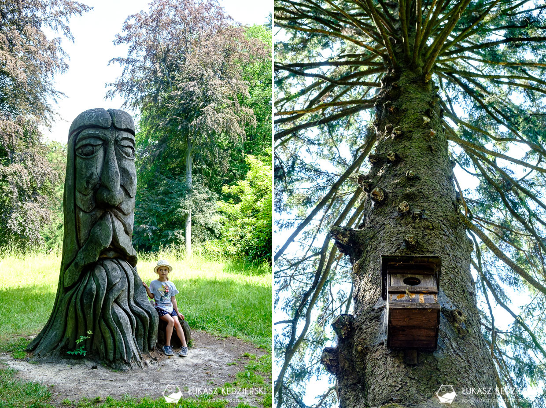 czeski raj arboretum bukovina Hruboskalsko