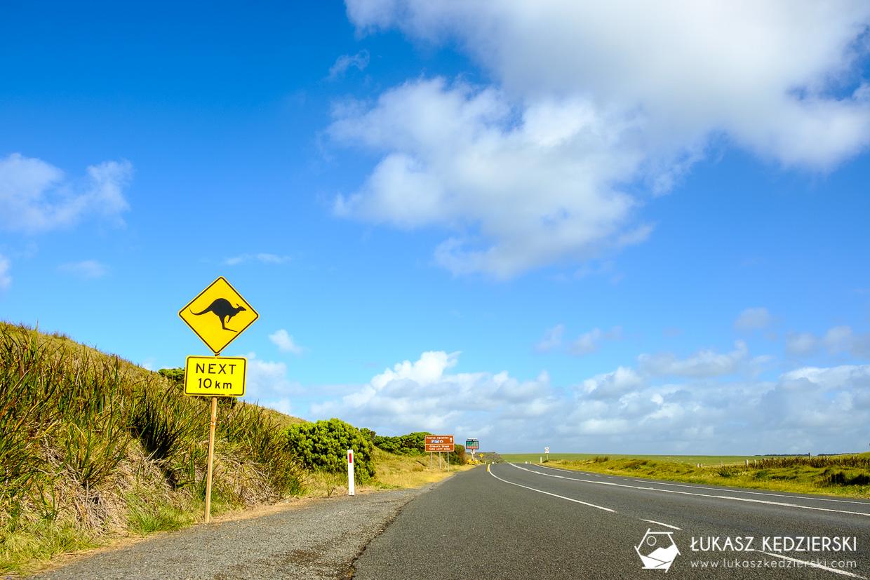 australia droga znak kangura
