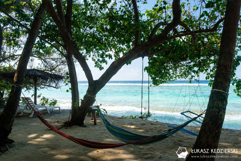 malediwy fulidhoo wyspa tropikalna wyspa lokalna wyspa na malediwach