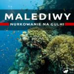Nurkowanie na Gulhi – wrażenia z nurkowania na Malediwach