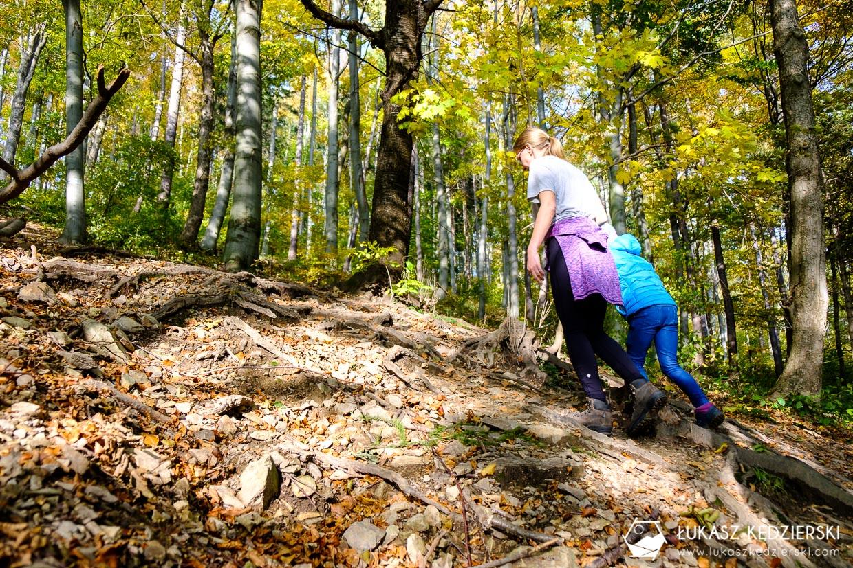 kłodzka góra góry bardzkie korona gór polski szlak