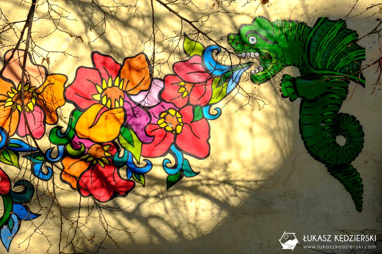 wrocław nadodrze rydygiera mural atrakcje wrocławia