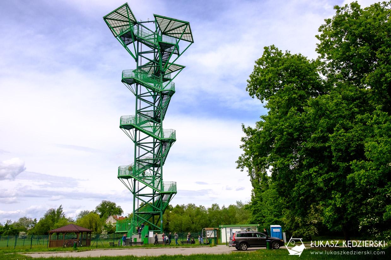 kotowice wieża widokowa wieża w kotowicach siechnice